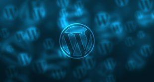 I 4 temi gratuiti più belli del 2020 per Wordpress